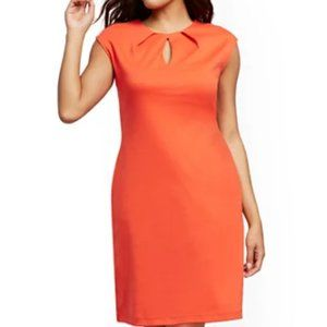 New York & Company Pocketed Dress - Large